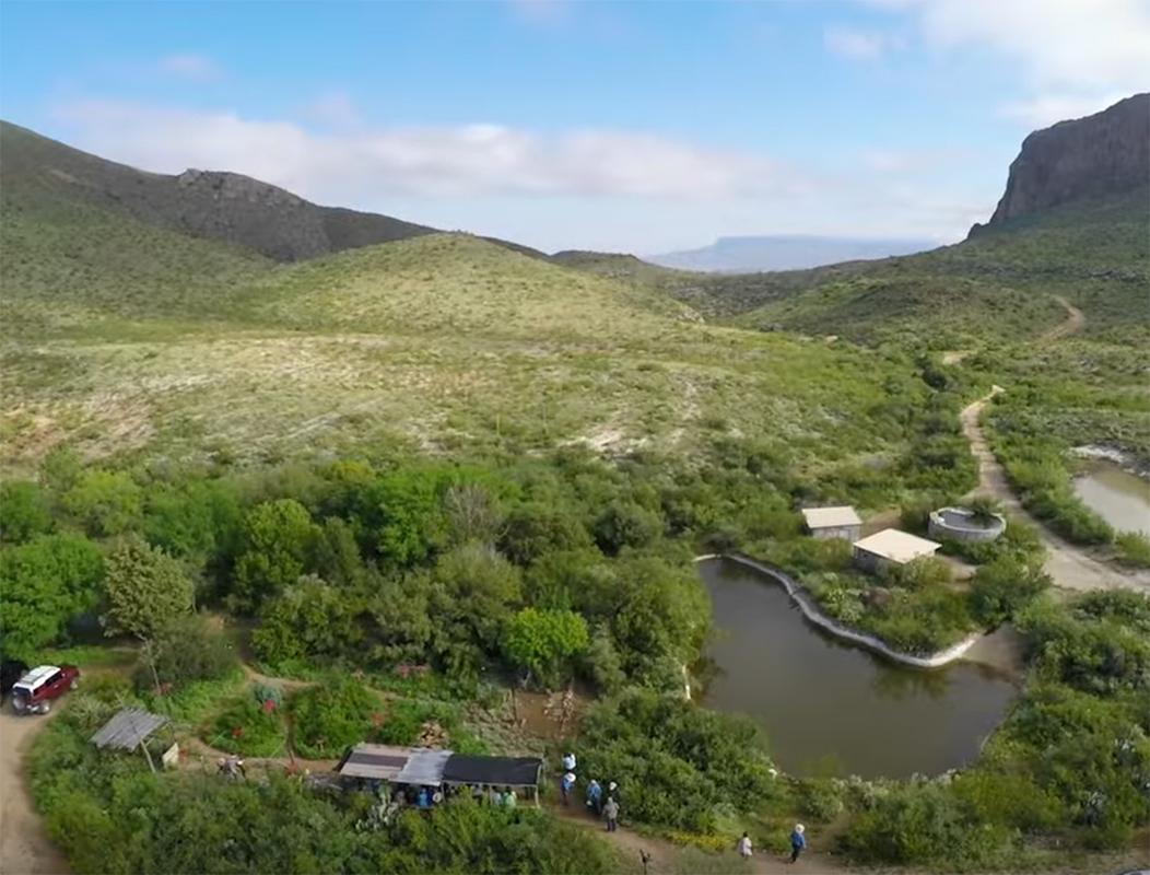Wetlands for Birds – Texas Parks & Wildlife